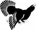 Suomen Metsästäjäliitto Suomen suurin metsästäjien etujärjestö